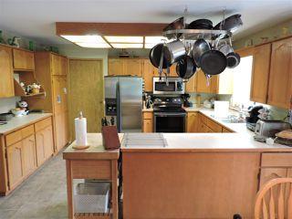 Photo 20: 12771 MCNUTT Road in Maple Ridge: Northeast House for sale : MLS®# R2490335