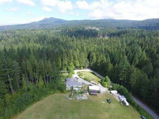 Photo 9: 12771 MCNUTT Road in Maple Ridge: Northeast House for sale : MLS®# R2490335