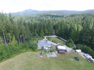 Photo 10: 12771 MCNUTT Road in Maple Ridge: Northeast House for sale : MLS®# R2490335