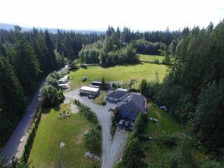 Photo 14: 12771 MCNUTT Road in Maple Ridge: Northeast House for sale : MLS®# R2490335