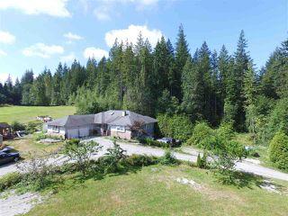 Photo 6: 12771 MCNUTT Road in Maple Ridge: Northeast House for sale : MLS®# R2490335