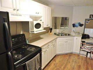 Photo 31: 12771 MCNUTT Road in Maple Ridge: Northeast House for sale : MLS®# R2490335