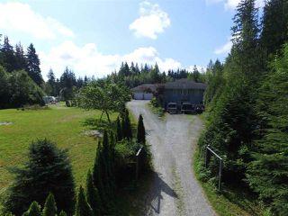 Photo 3: 12771 MCNUTT Road in Maple Ridge: Northeast House for sale : MLS®# R2490335