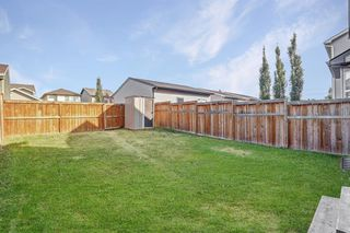 Photo 19: 195 CRANFORD Crescent SE in Calgary: Cranston Detached for sale : MLS®# A1031321