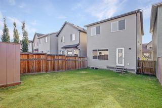 Photo 18: 195 CRANFORD Crescent SE in Calgary: Cranston Detached for sale : MLS®# A1031321