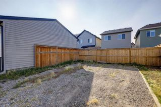 Photo 20: 195 CRANFORD Crescent SE in Calgary: Cranston Detached for sale : MLS®# A1031321