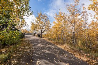Photo 14: 10626 81 Street in Edmonton: Zone 19 Vacant Lot for sale : MLS®# E4216062