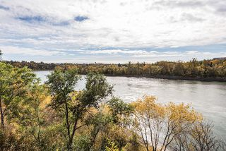 Photo 19: 10626 81 Street in Edmonton: Zone 19 Vacant Lot for sale : MLS®# E4216062