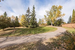 Photo 13: 10626 81 Street in Edmonton: Zone 19 Vacant Lot for sale : MLS®# E4216062