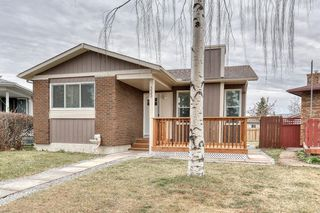 Photo 8: 355 Whitman Place NE in Calgary: Whitehorn Detached for sale : MLS®# A1046651