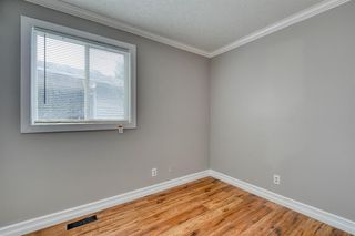 Photo 28: 355 Whitman Place NE in Calgary: Whitehorn Detached for sale : MLS®# A1046651