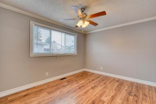 Photo 32: 355 Whitman Place NE in Calgary: Whitehorn Detached for sale : MLS®# A1046651