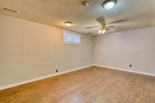Photo 22: 355 Whitman Place NE in Calgary: Whitehorn Detached for sale : MLS®# A1046651