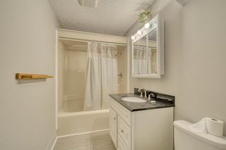 Photo 16: 355 Whitman Place NE in Calgary: Whitehorn Detached for sale : MLS®# A1046651