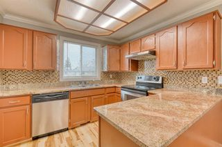 Photo 15: 355 Whitman Place NE in Calgary: Whitehorn Detached for sale : MLS®# A1046651