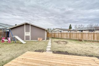 Photo 40: 355 Whitman Place NE in Calgary: Whitehorn Detached for sale : MLS®# A1046651