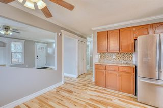 Photo 21: 355 Whitman Place NE in Calgary: Whitehorn Detached for sale : MLS®# A1046651