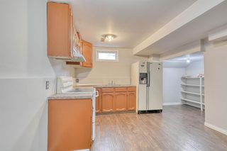 Photo 33: 355 Whitman Place NE in Calgary: Whitehorn Detached for sale : MLS®# A1046651