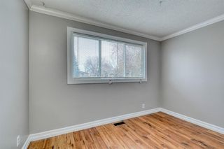 Photo 24: 355 Whitman Place NE in Calgary: Whitehorn Detached for sale : MLS®# A1046651