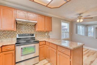 Photo 38: 355 Whitman Place NE in Calgary: Whitehorn Detached for sale : MLS®# A1046651