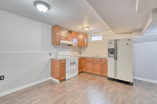 Photo 43: 355 Whitman Place NE in Calgary: Whitehorn Detached for sale : MLS®# A1046651