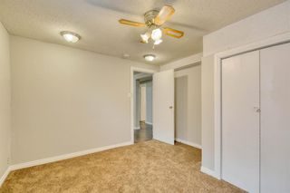 Photo 41: 355 Whitman Place NE in Calgary: Whitehorn Detached for sale : MLS®# A1046651