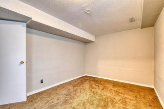 Photo 44: 355 Whitman Place NE in Calgary: Whitehorn Detached for sale : MLS®# A1046651