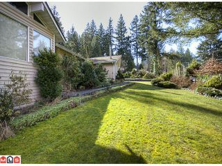 Photo 5: 15656 MOUNTAIN VIEW Drive in Surrey: Grandview Surrey House for sale (South Surrey White Rock)  : MLS®# F1107097
