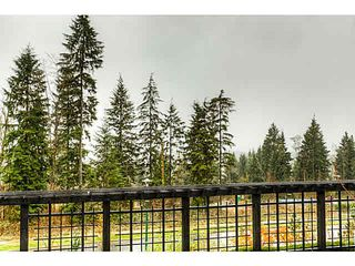 "Photo 20: 82 1320 RILEY Street in Coquitlam: Burke Mountain Townhouse for sale in ""RILEY BY MOSAIC"" : MLS®# V1095086"