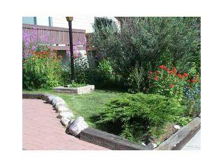 Photo 4: 2833 29 Street SW in Calgary: Killarney_Glengarry House for sale : MLS®# C3656073