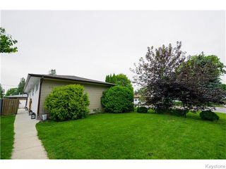 Photo 15: 46 Westdale Place in Winnipeg: St Vital Residential for sale (South East Winnipeg)  : MLS®# 1618565
