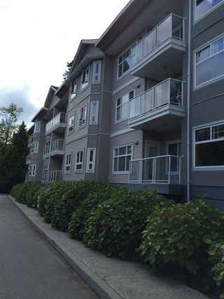 "Photo 3: 106 8976 208 Street in Langley: Walnut Grove Condo for sale in ""oakridge"" : MLS®# R2091641"