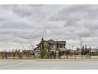 Photo 48: 43 BRIGHTONSTONE Grove SE in Calgary: New Brighton House for sale : MLS®# C4085071