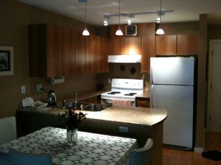 Photo 2: 419 12083 92A Avenue in Tamaron: Home for sale : MLS®# F1027935