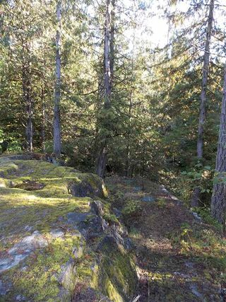 Photo 10: Pender Harbor Property and Land  For Sale