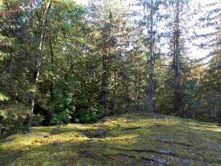 Photo 8: Pender Harbor Property and Land  For Sale