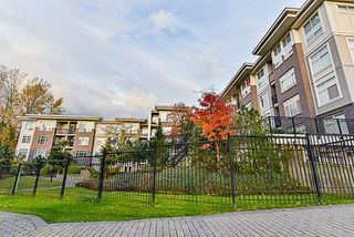 Photo 18: 402 13555 GATEWAY Drive in Surrey: Whalley Condo for sale (North Surrey)  : MLS®# R2222591
