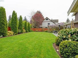 Photo 18: 4959 Haliburton Terr in VICTORIA: SE Cordova Bay Single Family Detached for sale (Saanich East)  : MLS®# 786451