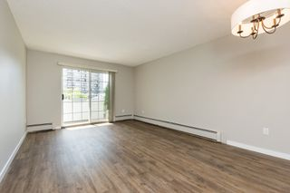 "Photo 6: 205 707 EIGHTH Street in New Westminster: Uptown NW Condo for sale in ""The Diplomat"" : MLS®# R2273026"