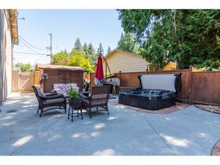 Photo 17: 3807 201A Street in Langley: Brookswood Langley House for sale : MLS®# R2278368