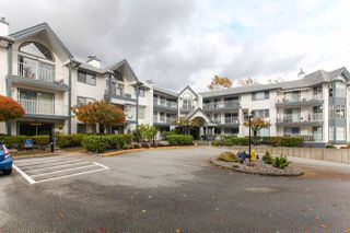 "Main Photo: 209 11601 227 Street in Maple Ridge: East Central Condo for sale in ""Castlemont in FRASERVIEW VILLAGE"" : MLS®# R2331937"