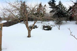 Photo 29: 10407 10 Avenue in Edmonton: Zone 16 House for sale : MLS®# E4142226