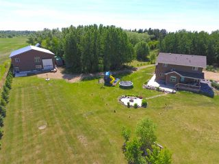 Photo 30: 51417 RGE RD 261: Rural Parkland County House for sale : MLS®# E4145799