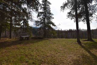 Photo 14: 27775 TELKWA HIGH Road in Smithers: Smithers - Rural House for sale (Smithers And Area (Zone 54))  : MLS®# R2349759