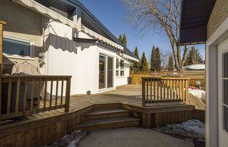 Photo 27: 14323 50 Avenue in Edmonton: Zone 14 House for sale : MLS®# E4148007