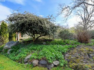 Photo 15: 821 ISLAND Rd in VICTORIA: OB South Oak Bay House for sale (Oak Bay)  : MLS®# 810352
