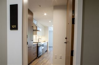 Photo 3: 101 6933 CAMBIE Street in Vancouver: South Cambie Condo for sale (Vancouver West)  : MLS®# R2377038