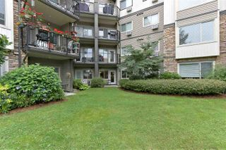 "Photo 19: 116 11935 BURNETT Street in Maple Ridge: East Central Condo for sale in ""KENSINGTON PARK"" : MLS®# R2386385"