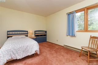 Photo 21: 4221 Glendenning Rd in VICTORIA: SE Blenkinsop Single Family Detached for sale (Saanich East)  : MLS®# 821064