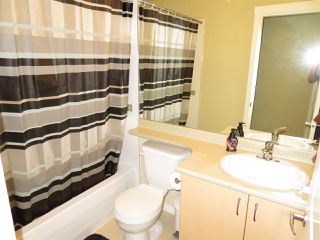 """Photo 11: 79 20350 68 Avenue in Langley: Willoughby Heights Townhouse for sale in """"Sunridge"""" : MLS®# R2399690"""